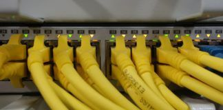 Network Cables connected to a Switch